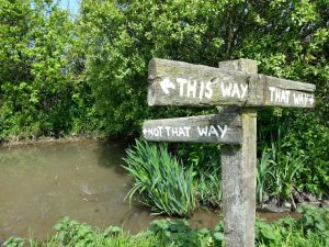 thiswaynotthatway