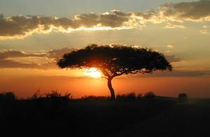 africa_sunset
